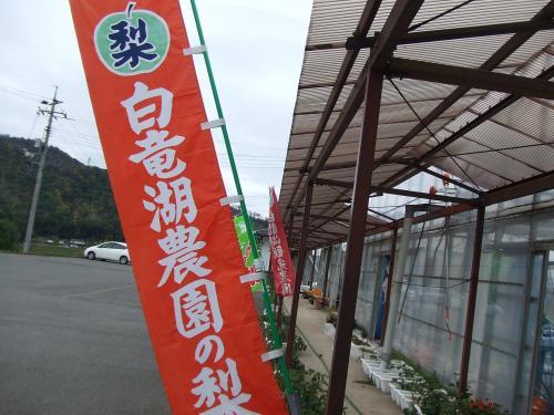 白竜湖観光農園