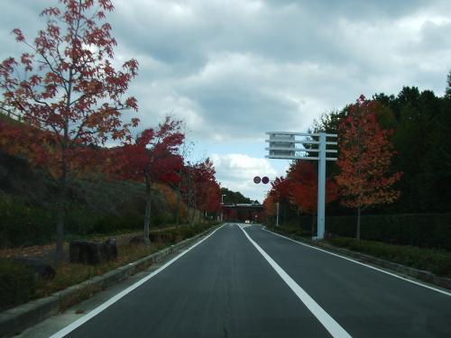 三景園への道~♪