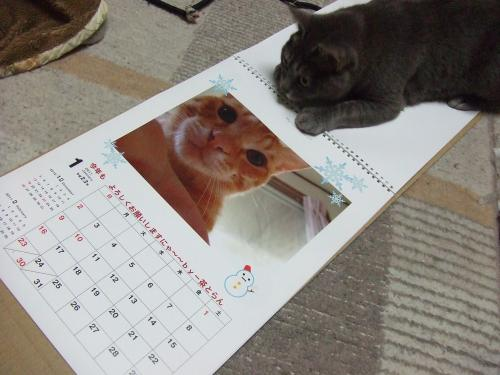 カレンダー作ったよ