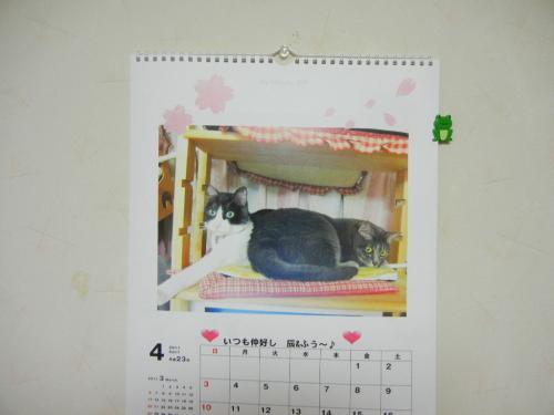 今月のカレンダー^^