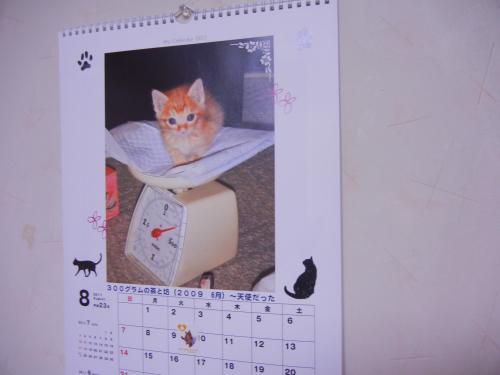 今月の我が家カレンダー