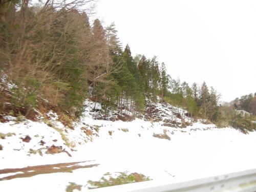 豊平雪の中