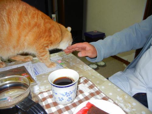高砂のお兄ちゃん(おじさん・・・笑)と茶とらん