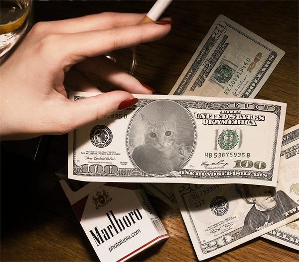 ニャンドル紙幣