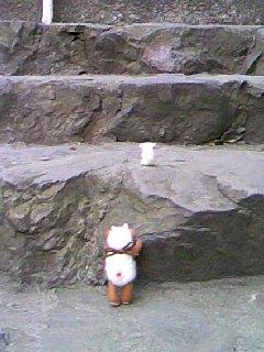 20100125125717