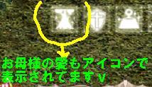 05-11-2209.jpg