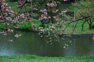 2009-04-25-034.jpg