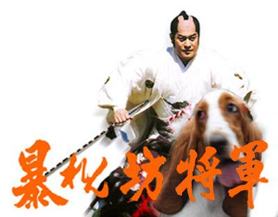 Abarenbo_Shogunのコピー