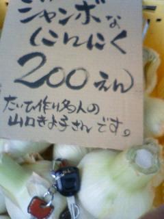 201006081253000.jpg