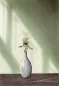 19941024メイプルソープの花 模写
