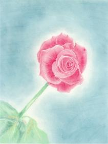 19941103メイプルソープの花 模写