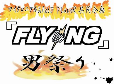 flying2.jpg