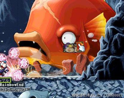 金魚2匹目