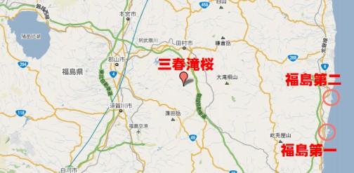 三春滝桜MP