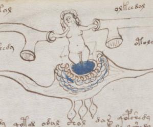 Voynich Manuscript01