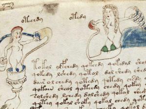 Voynich Manuscript03