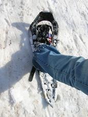 snowshoes3.jpg