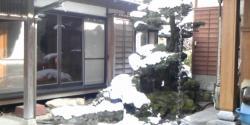 2011_NewYear_01