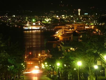 080909 八幡坂から見た港