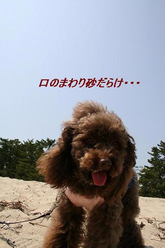IMG_3625.jpg