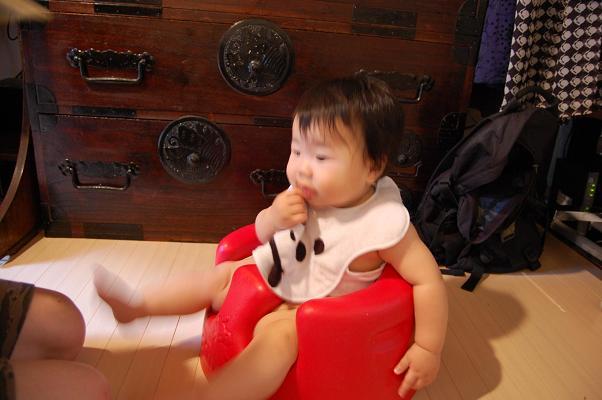 20090719_きなこ3