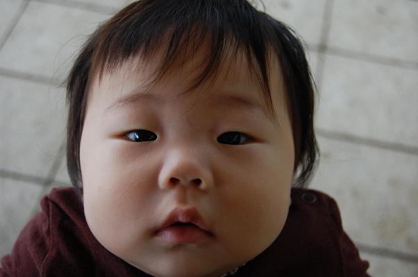 20090722_にっしょく2