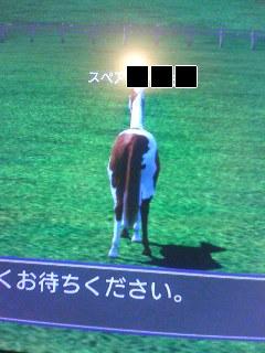 通称:牛男(本当はスペア君)(;´∀`)