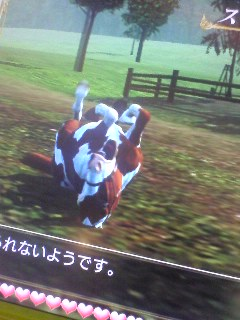my馬グラビア~その2~