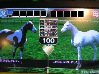 茶牛と白馬の子供を作ってみました~ヽ(*´∀`*)ノ
