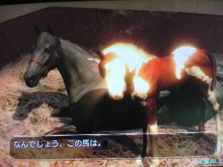特殊馬の子も特殊キタ━━(゚∀゚)━━!!!牛?