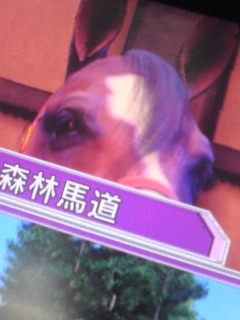 ver1.1の前髪…ウスッ!(´△`)ノシ