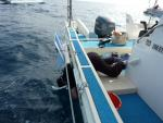 「はぴねす」でクジラウォッチングする沖縄リゾートオーナー(2011/2座間味)