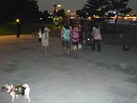 P1050322-2.jpg