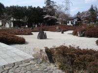 山梨桜04
