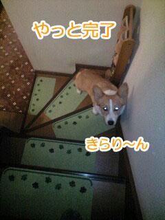 100325_1843~0001