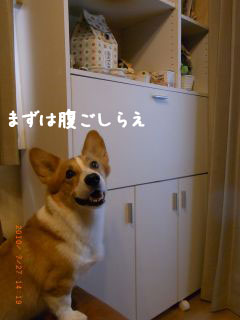 RIMG1929_320.jpg