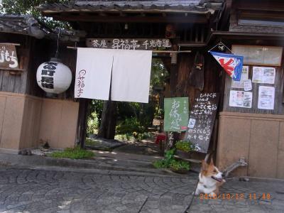 syoufukutei-1.jpg