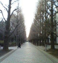 大学の風景