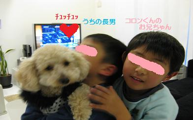 IMG_0163-1.jpg