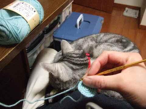 編み物中ですが