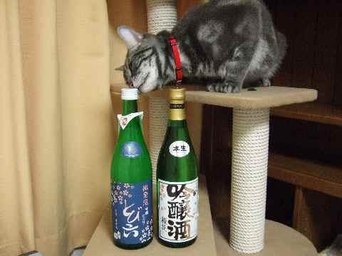 生酒2本♪