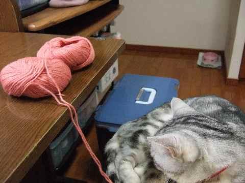 編み物中2