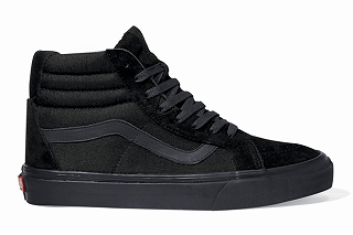 Vans-Core-Holiday-2011-Hosoi-02.jpg