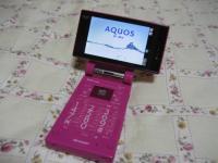 aquoscochan009.jpg