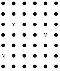YNM 09 #0001