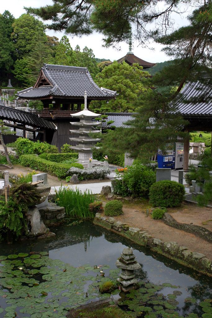 瑠璃光寺境内の池