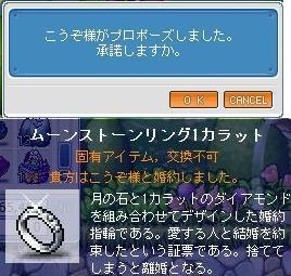 WS000050_20090317165640.jpg