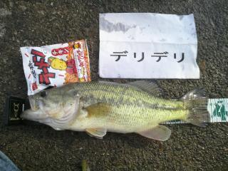 10kitaura50501.jpg