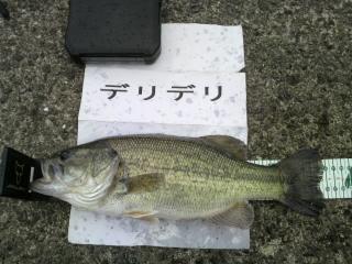 10kitaura50701.jpg