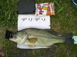 10kitaura50802.jpg